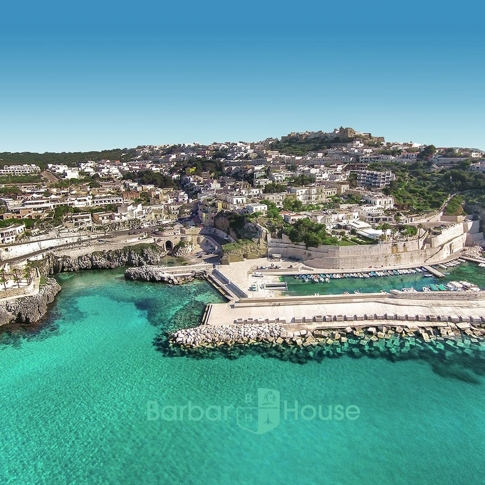 Castro Marina Porto, Barbarhouse