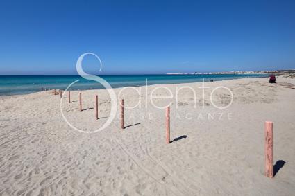 La Playa PT