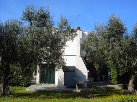 case vacanze - Li Sauli ( Gallipoli ) - Residenza Gabriella Bilo B