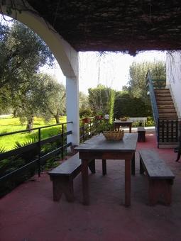 holiday homes - Li Sauli ( Gallipoli ) - Residence Gabriella Apartment Penta