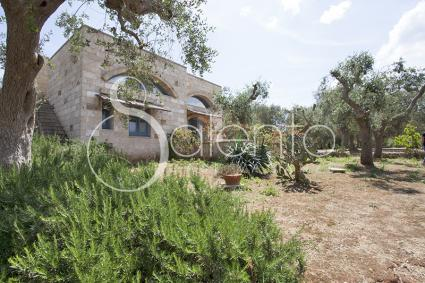 case vacanze - Diso - Spongano ( Otranto ) - Dimore di Campagna: Sacàra