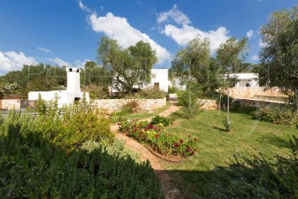 garden with Mediterranen herbs
