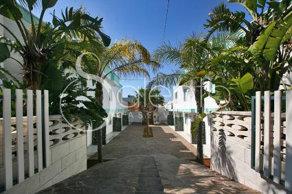 case vacanze - Torre Suda ( Gallipoli ) - Residence Le Palme - Trilo 10