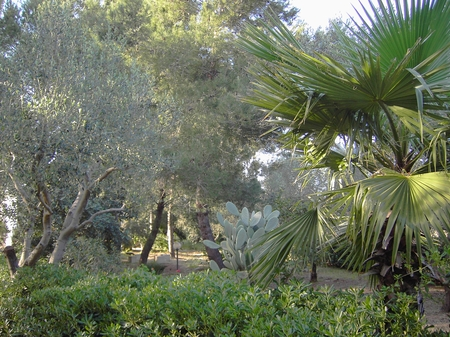 ville e villette - Matino ( Gallipoli ) - Villetta Giorgio