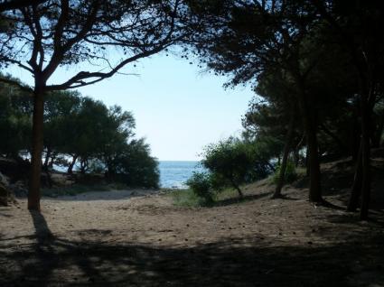 ville e villette - Rivabella ( Gallipoli ) - Villetta Alba