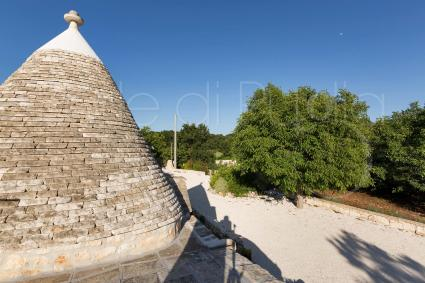 trulli e case tipiche - Alberobello ( Bari ) - Trullo U Fragn