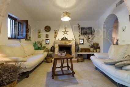 La zona living con i divani ha un bellissimo caminetto
