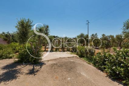 small villas - Baia Verde ( Gallipoli ) - Villino del Carmine