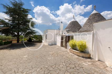 trulli e pajare - Alberobello ( Bari ) - Trullo del Cavaliere