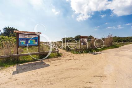 kleine Villen - Riva degli Angeli - Punta Prosciutto ( Porto Cesareo ) - Riva del Conte