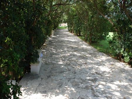 case vacanze - San Foca ( Otranto ) - Residence San Foca - Bilo n. 8