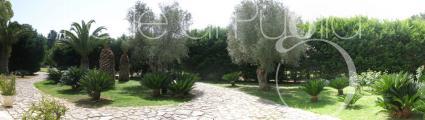 ville e villette - Pescoluse ( Leuca ) - Villetta Carolina