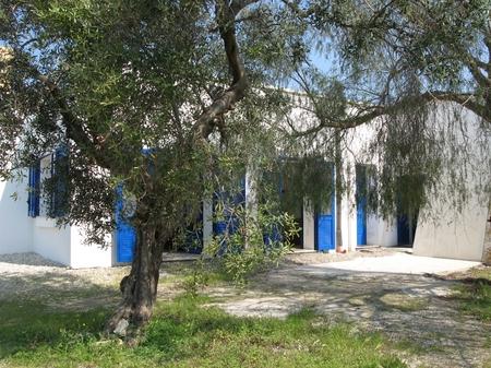 ville e villette - Pescoluse ( Leuca ) - Villa  Sofia