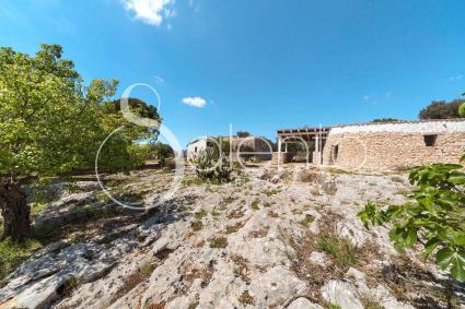 trulli e pajare - Torre Vado ( Leuca ) - Trulli le Scalelle - Casa Ovale