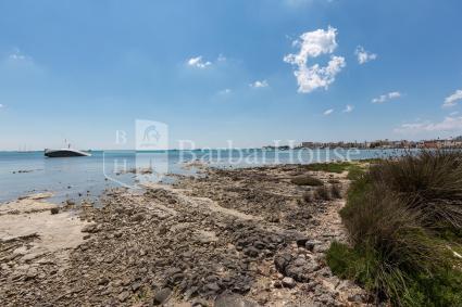 holiday homes - Porto Cesareo ( Porto Cesareo ) - Viva Seaview - Bilo Secondo Piano