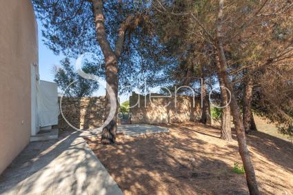 small villas - Gallipoli ( Gallipoli ) - CSA - Casino dei Pini