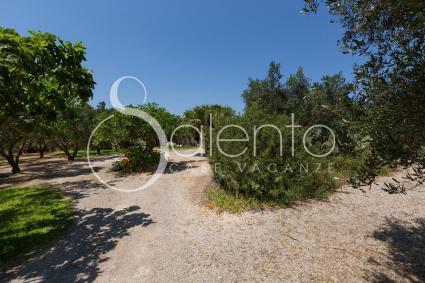 trulli e pajare - Sternatia - Soleto - Corigliano ( Otranto ) - Casolare Lu Potu