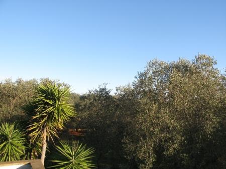 trulli e pajare - Andrano ( Otranto ) - Pajara du Papa