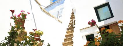 case vacanze - Taviano - Racale ( Gallipoli ) - Casa San Martino