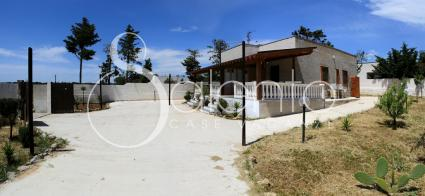 case vacanze - Torre Lapillo ( Porto Cesareo ) - Villa Alena - Appartamento B