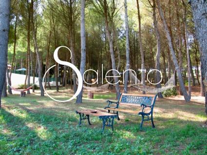 case vacanze - Punta della Suina ( Gallipoli ) - Residenza del Timo 1P- 04 Monte